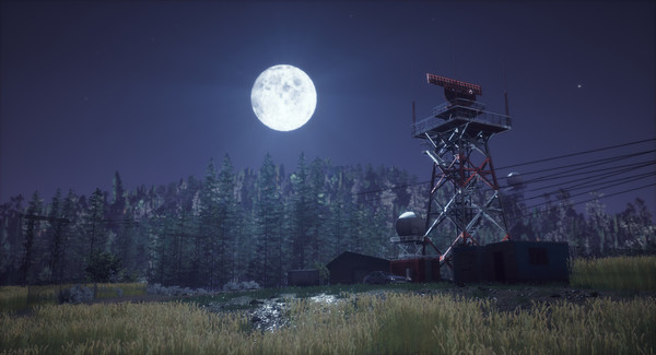 WINDSTORM the game, an image depicting a beautiful moonlit night.